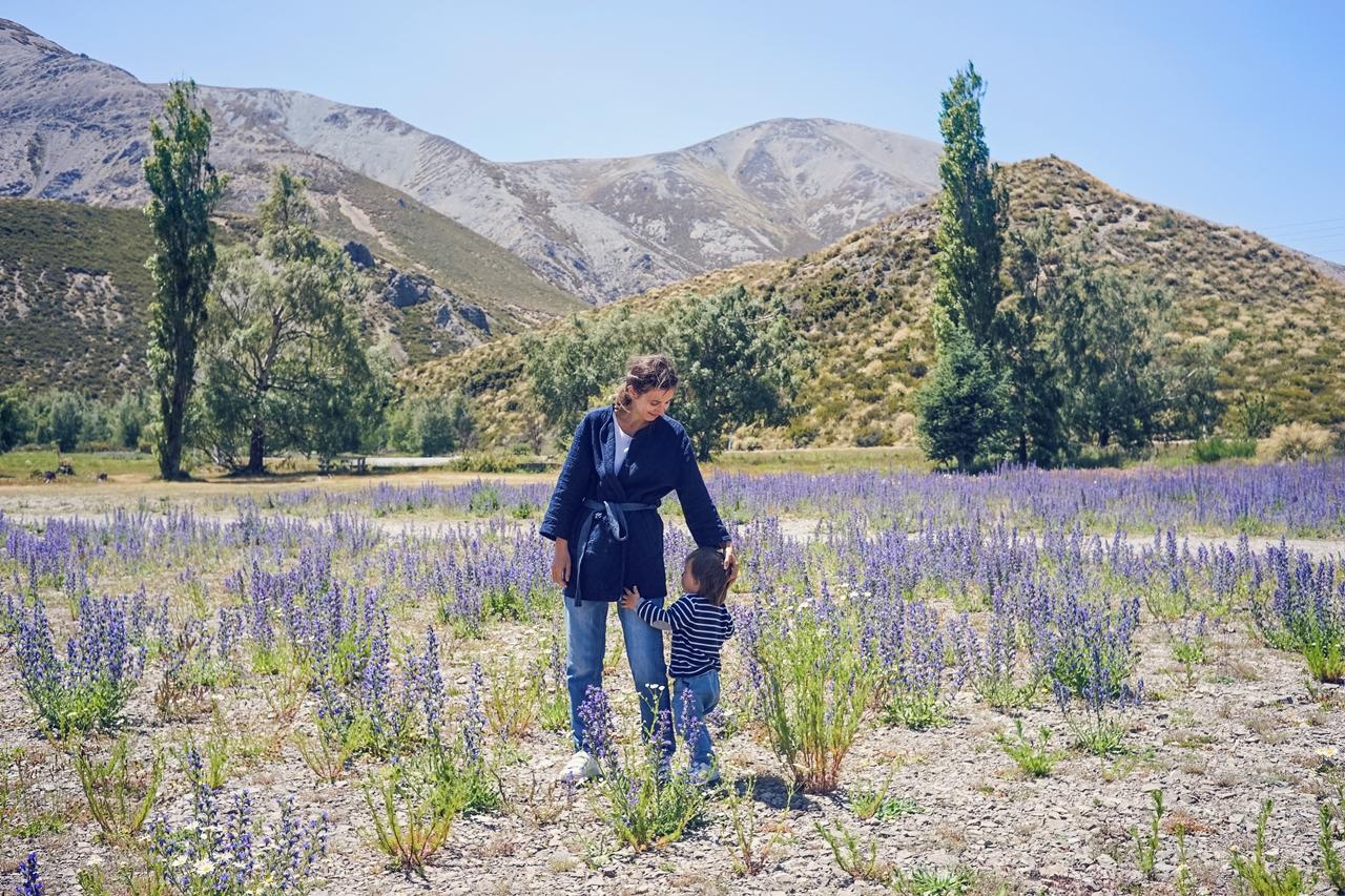 Noua Zeelandă Facebook: Primele Imagini Din Noua Zeelanda